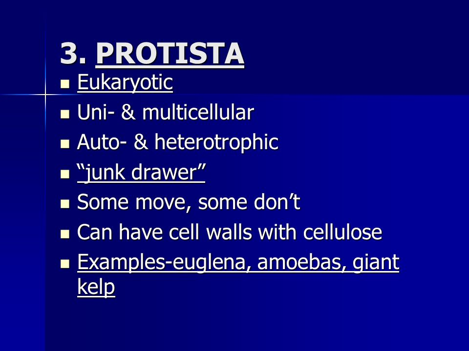 3. PROTISTA Eukaryotic Uni- & multicellular Auto- & heterotrophic
