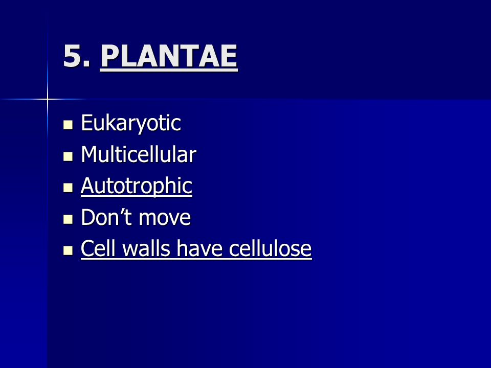 5. PLANTAE Eukaryotic Multicellular Autotrophic Don't move