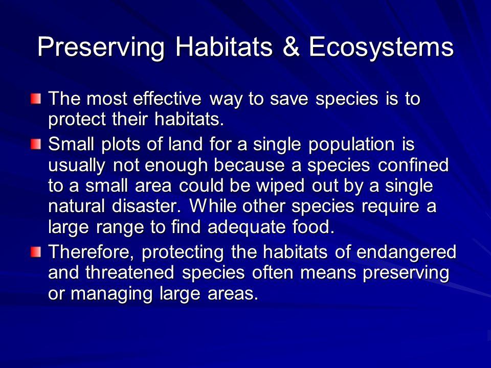 Preserving Habitats & Ecosystems