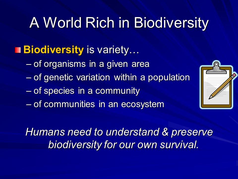 A World Rich in Biodiversity