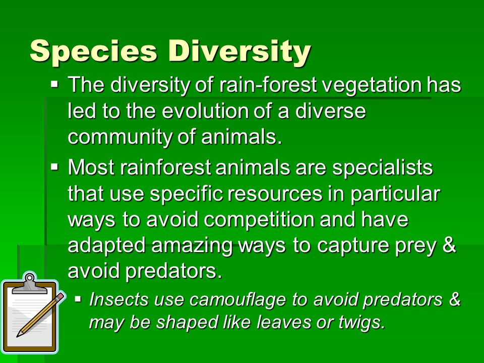 Species Diversity The diversity of rain-forest vegetation has led to the evolution of a diverse community of animals.