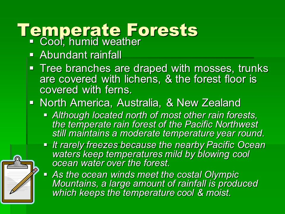 Temperate Forests Cool, humid weather Abundant rainfall