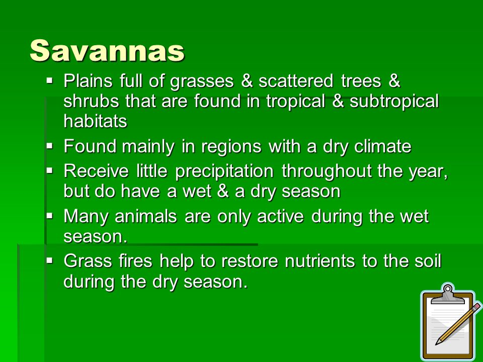Savannas Plains full of grasses & scattered trees & shrubs that are found in tropical & subtropical habitats.
