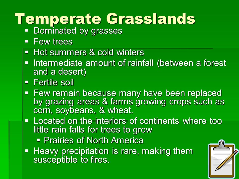 Temperate Grasslands Dominated by grasses Few trees