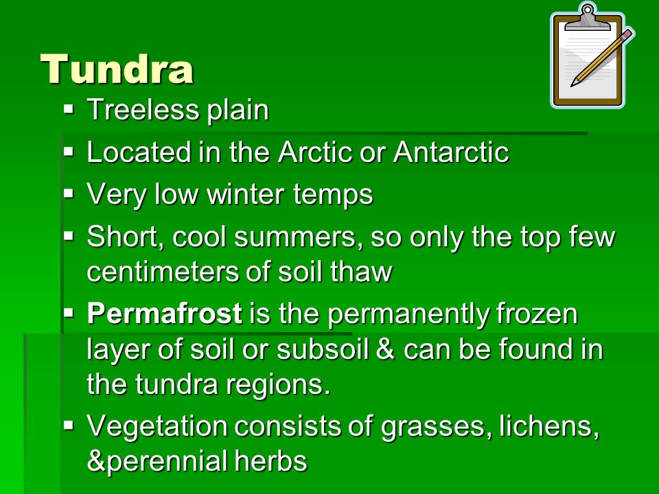 Tundra Treeless plain Located in the Arctic or Antarctic