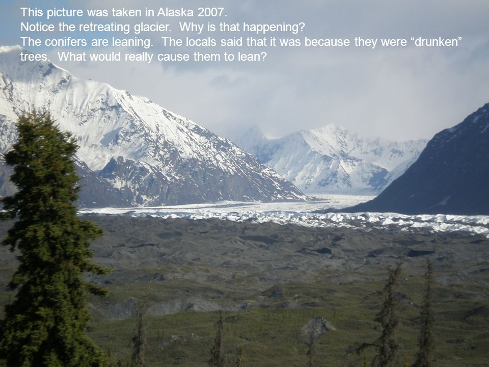 This picture was taken in Alaska 2007.