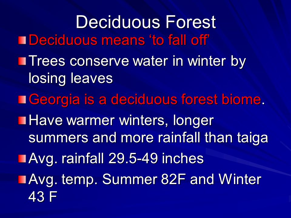 Deciduous Forest Deciduous means 'to fall off'