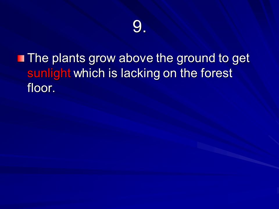 9. The plants grow above the ground to get sunlight which is lacking on the forest floor.