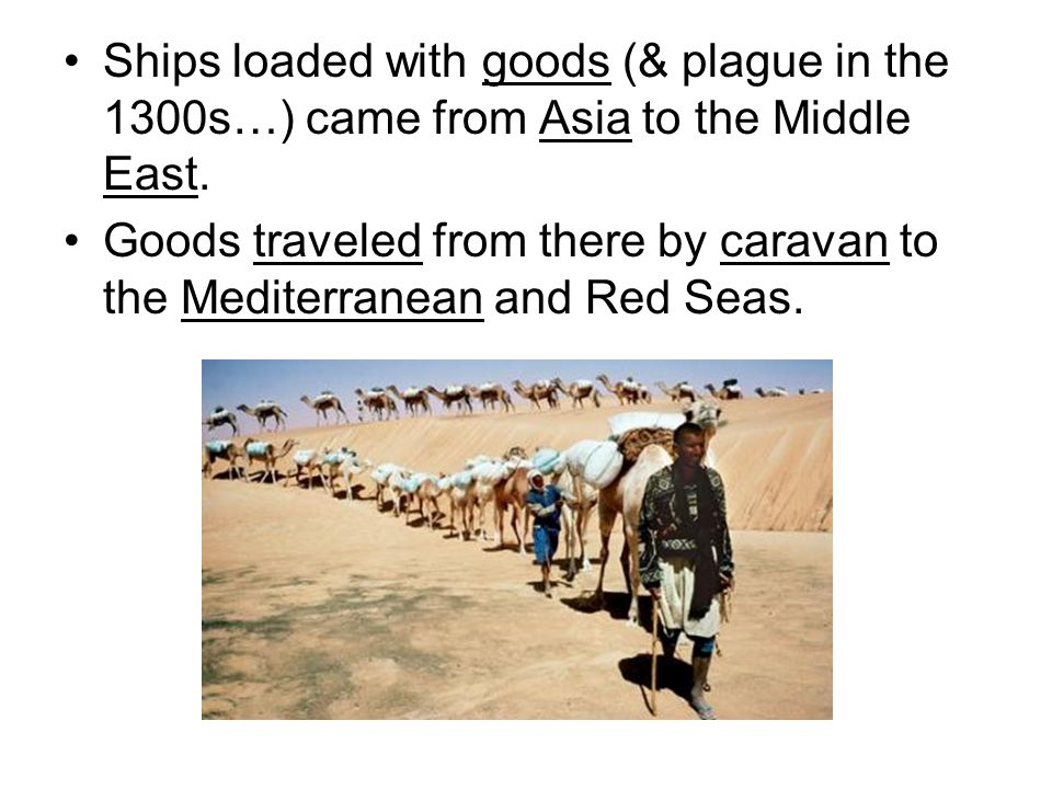 Ships loaded with goods (& plague in the 1300s…) came from Asia to the Middle East.