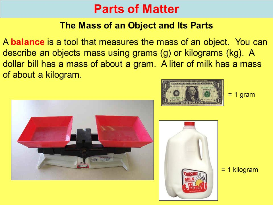 The Mass of an Object and Its Parts