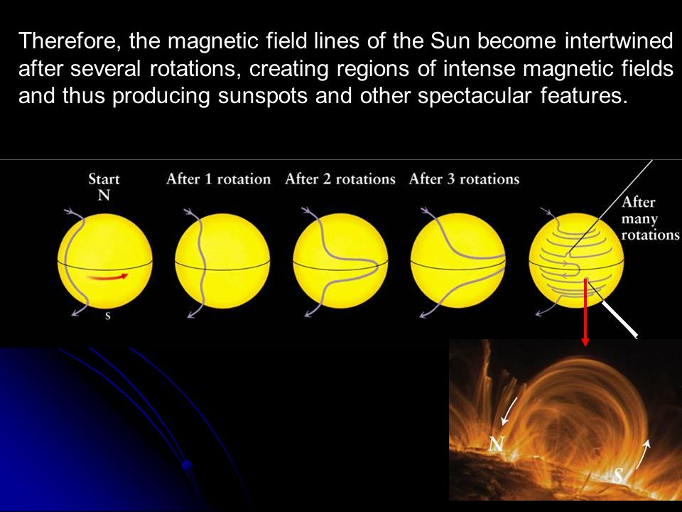 Therefore, the magnetic field lines of the Sun become intertwined after several rotations, creating regions of intense magnetic fields and thus producing sunspots and other spectacular features.