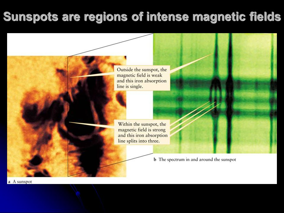 Sunspots are regions of intense magnetic fields