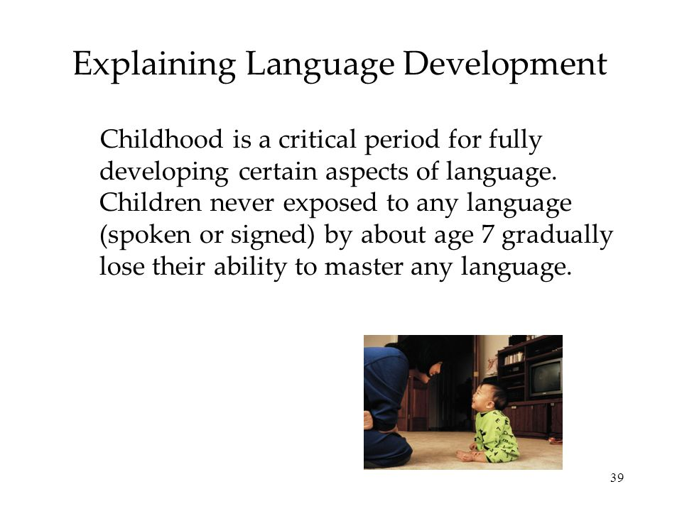 Explaining Language Development