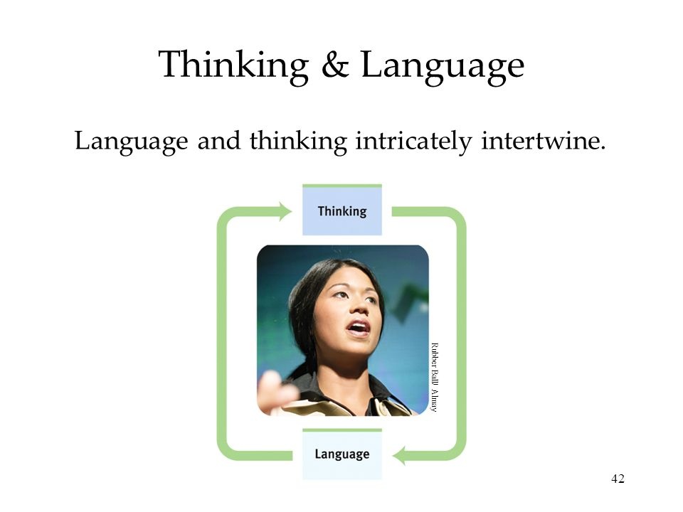Language and thinking intricately intertwine.