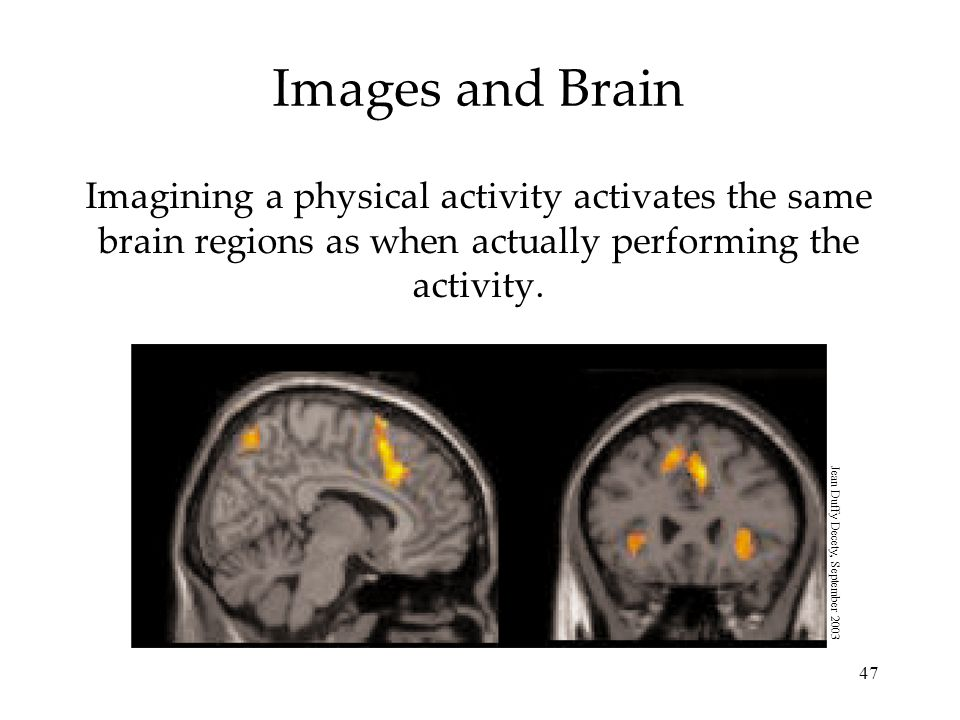 Images and Brain Imagining a physical activity activates the same brain regions as when actually performing the activity.