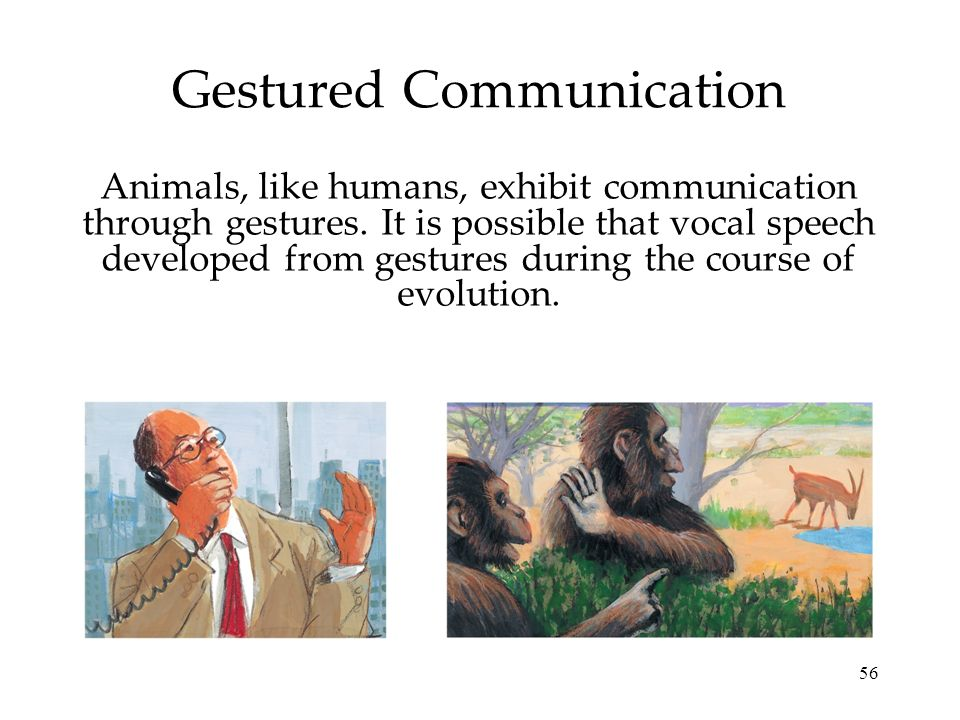 Gestured Communication