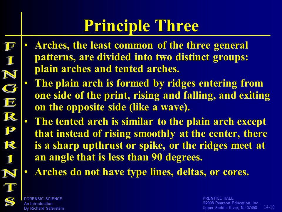 Principle Three FINGERPRINTS