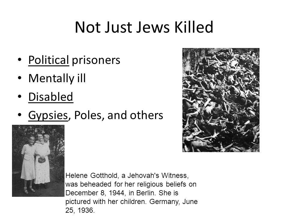 Not Just Jews Killed Political prisoners Mentally ill Disabled