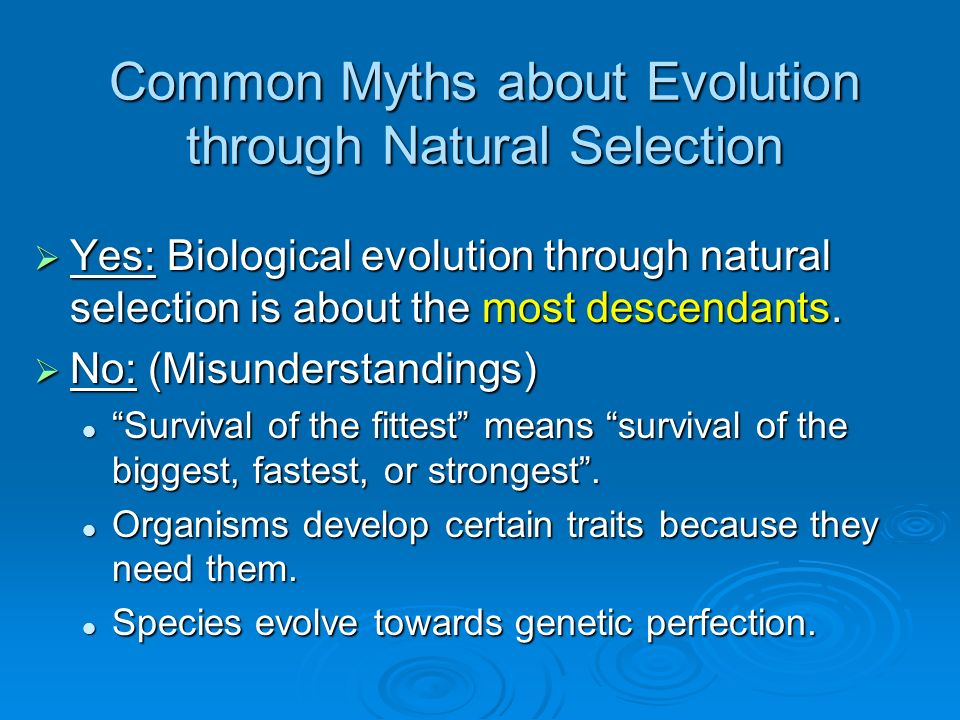 Common Myths about Evolution through Natural Selection