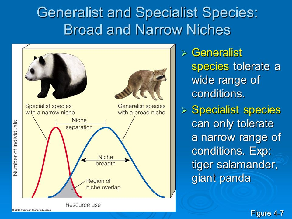 Generalist and Specialist Species: Broad and Narrow Niches