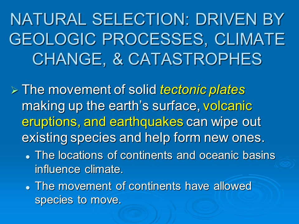 NATURAL SELECTION: DRIVEN BY GEOLOGIC PROCESSES, CLIMATE CHANGE, & CATASTROPHES