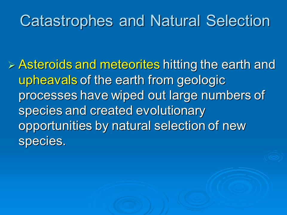 Catastrophes and Natural Selection