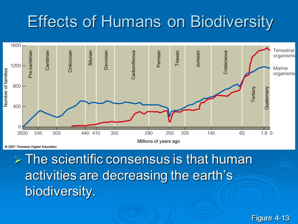 Effects of Humans on Biodiversity