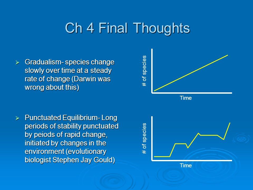 Ch 4 Final Thoughts Gradualism- species change slowly over time at a steady rate of change (Darwin was wrong about this)