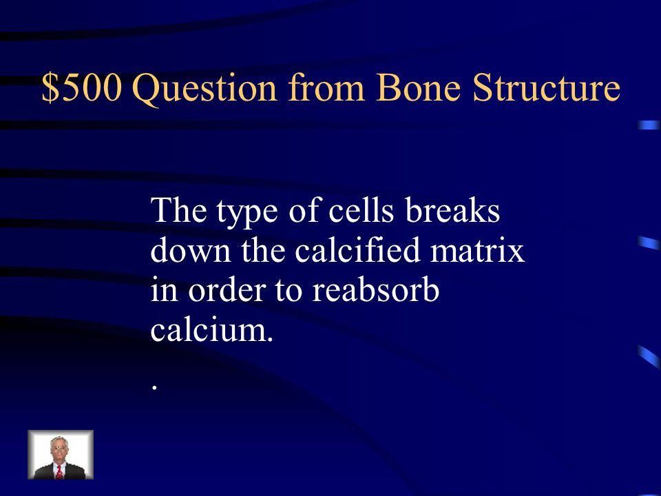 $500 Question from Bone Structure