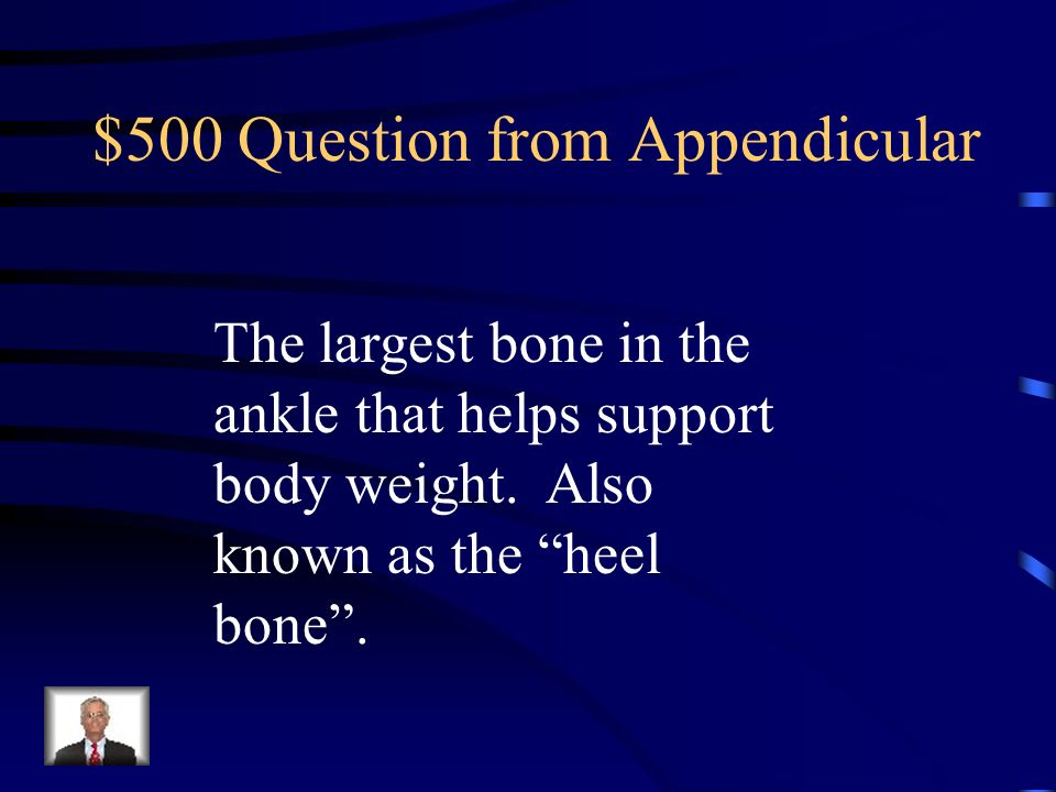 $500 Question from Appendicular