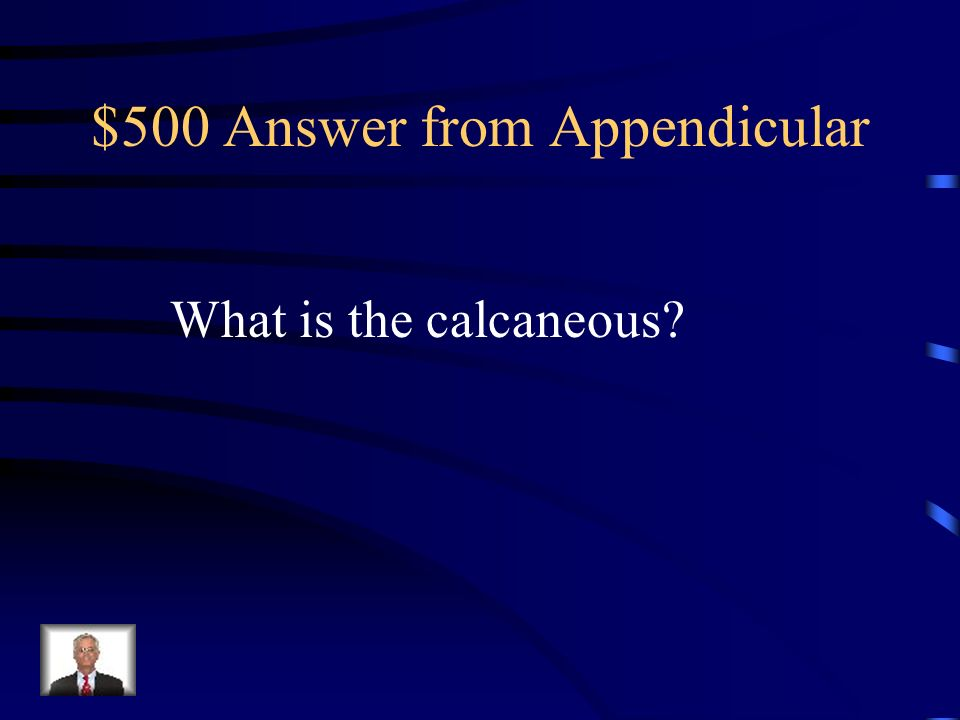 $500 Answer from Appendicular