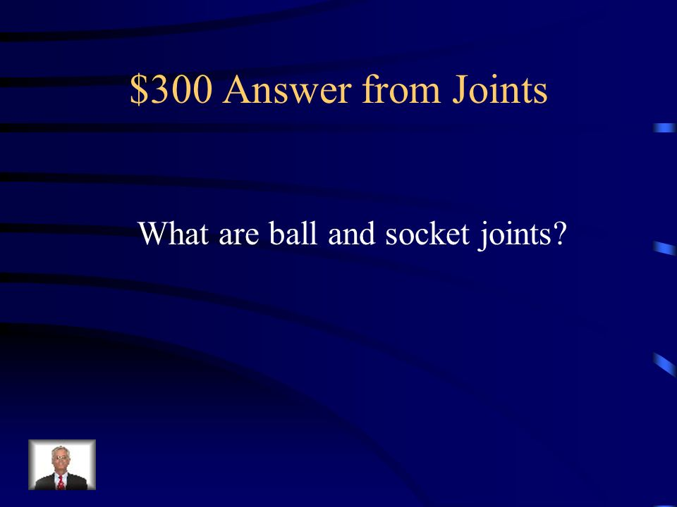 $300 Answer from Joints What are ball and socket joints