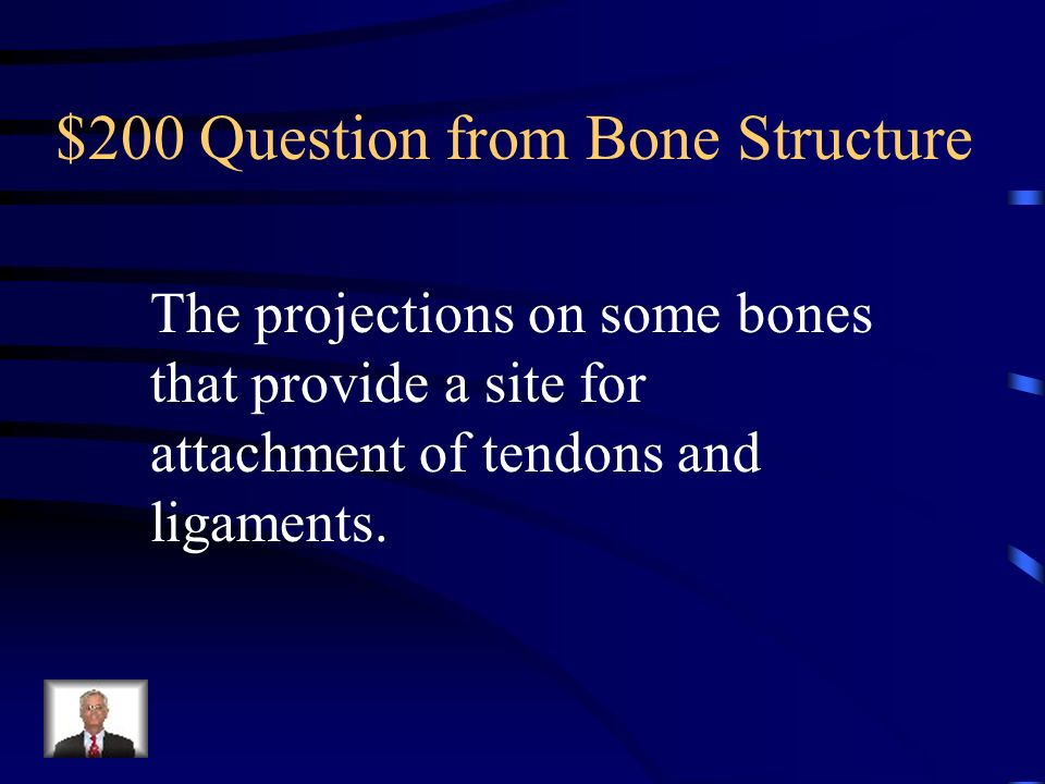 $200 Question from Bone Structure