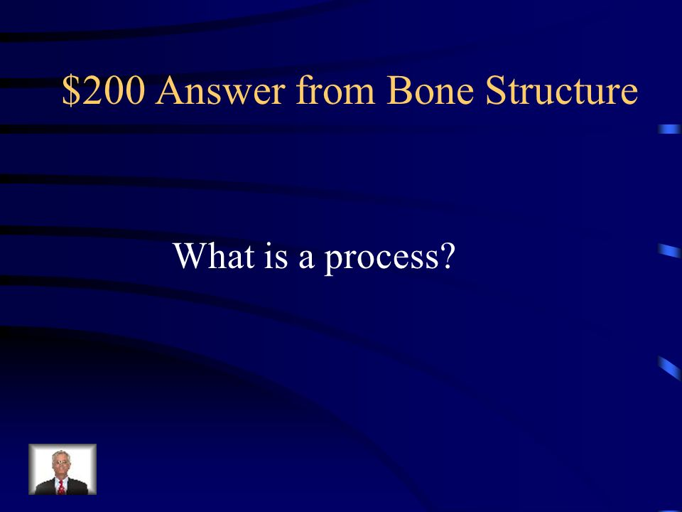 $200 Answer from Bone Structure