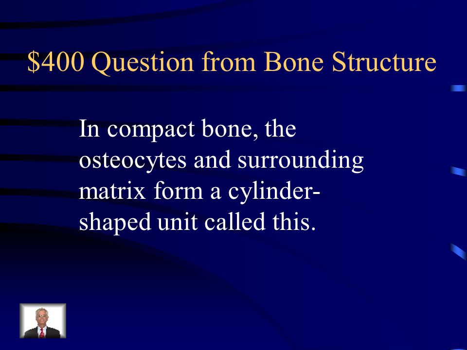 $400 Question from Bone Structure