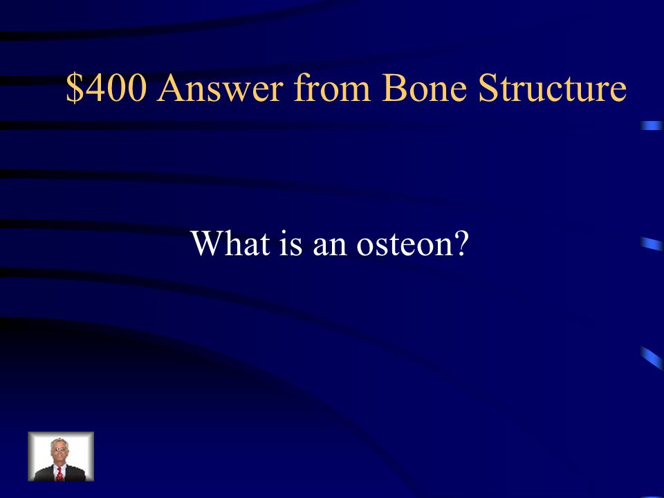 $400 Answer from Bone Structure