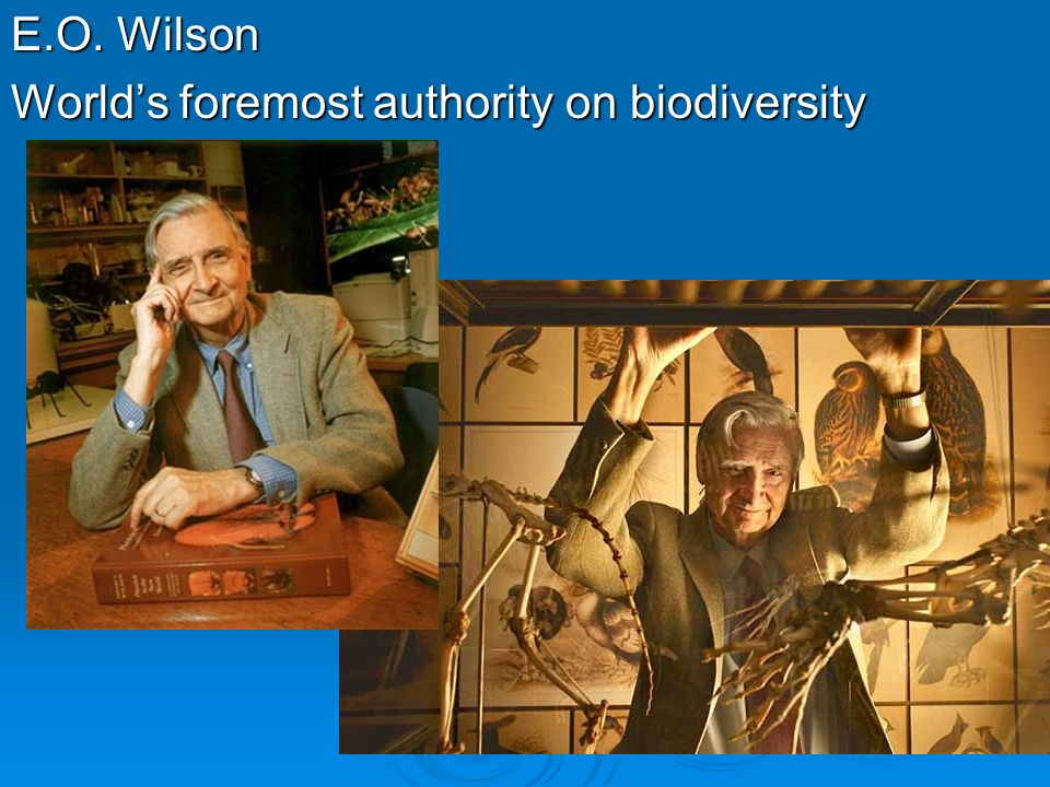 E.O. Wilson World's foremost authority on biodiversity