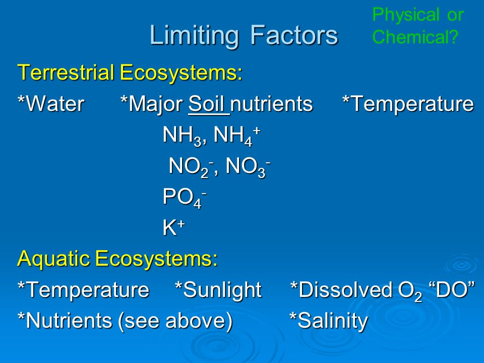 Limiting Factors Terrestrial Ecosystems: