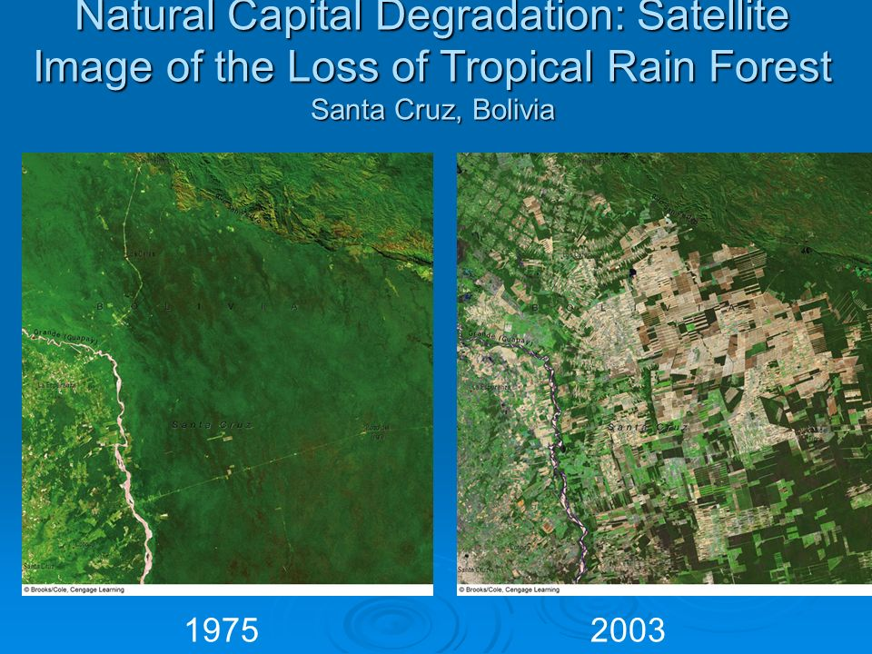 Natural Capital Degradation: Satellite Image of the Loss of Tropical Rain Forest Santa Cruz, Bolivia