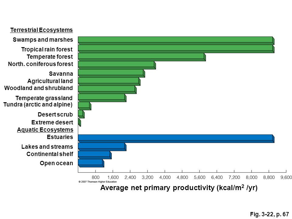 Average net primary productivity (kcal/m2 /yr)