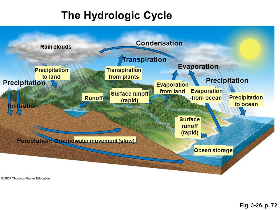 The Hydrologic Cycle Condensation Transpiration Evaporation
