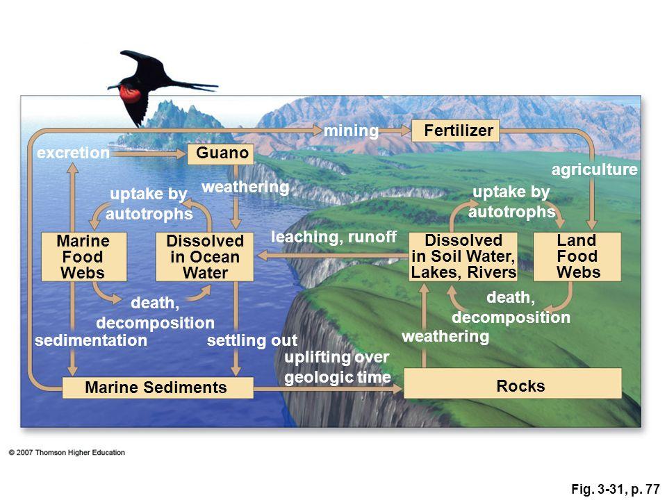 mining Fertilizer excretion Guano agriculture weathering uptake by