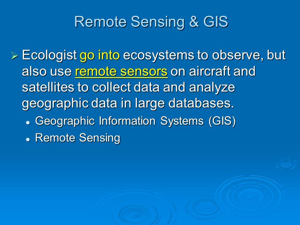 Remote Sensing & GIS