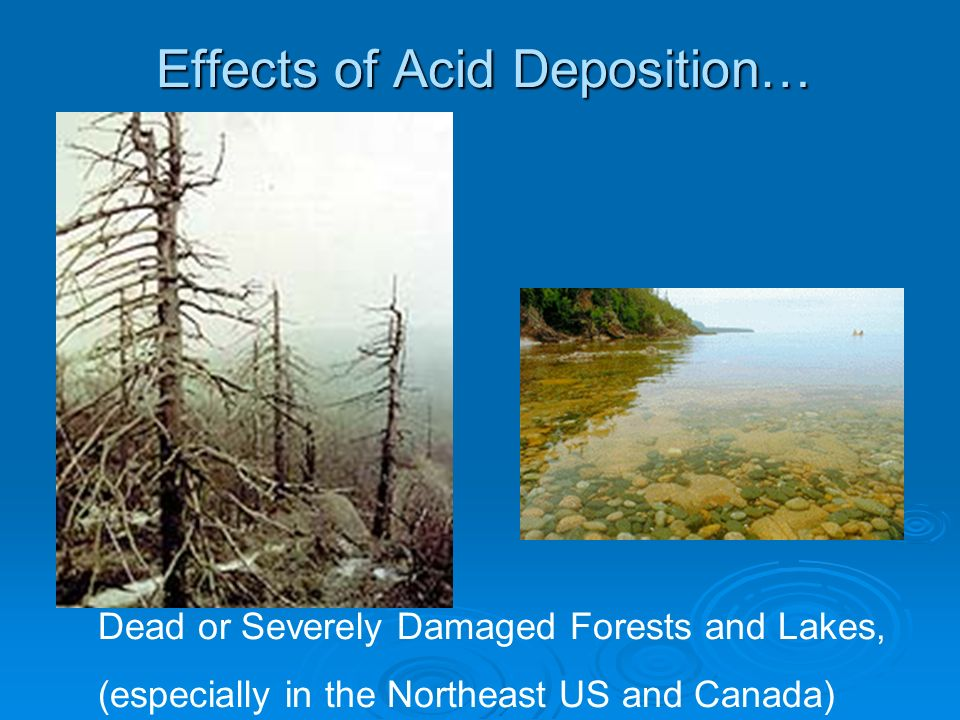 Effects of Acid Deposition…