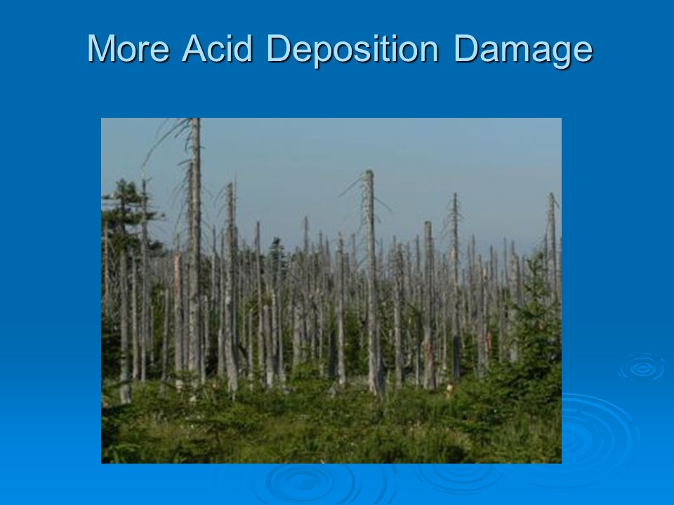 More Acid Deposition Damage