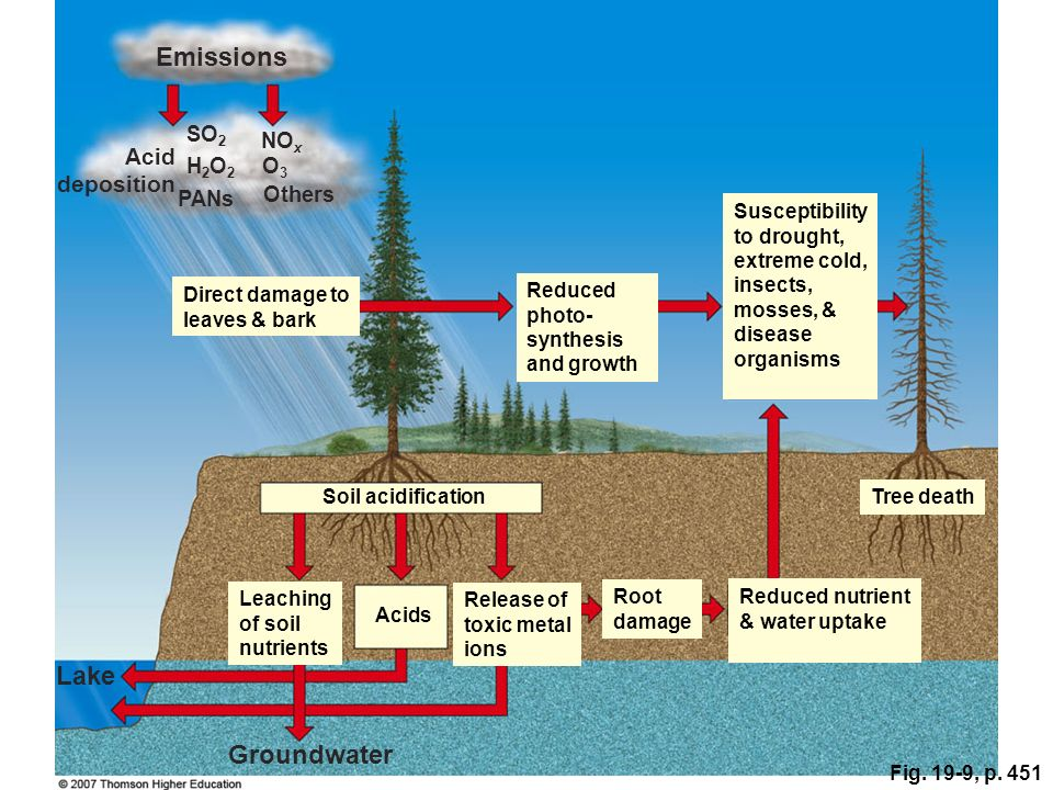 Emissions Lake Groundwater Acid deposition SO2 NOx H2O2 O3 PANs Others