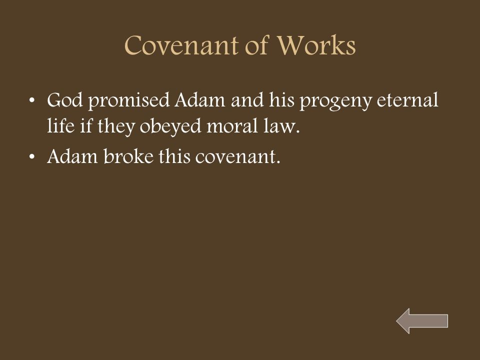 Covenant of Works God promised Adam and his progeny eternal life if they obeyed moral law.