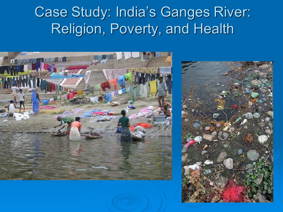 Poverty and pollution Case Study