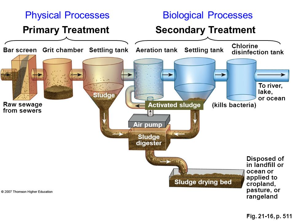 Physical Processes Biological Processes Primary Treatment