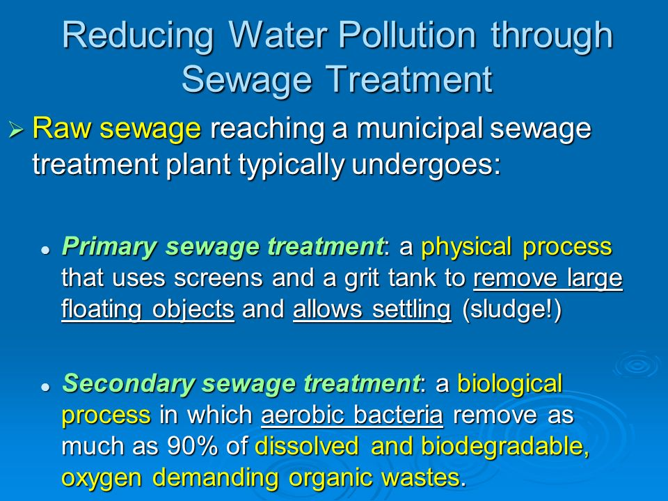 Pollution in Wastewater: Types and Removal Essay Sample